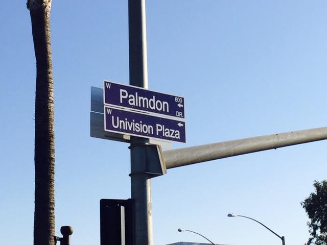 Palmdon